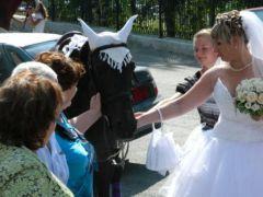 Свадебные лошади