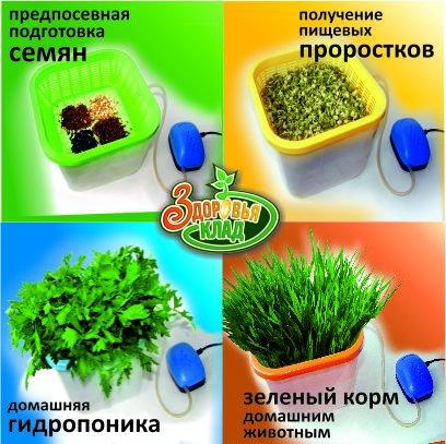 Прикрепленное изображение: Другая зелень.jpg