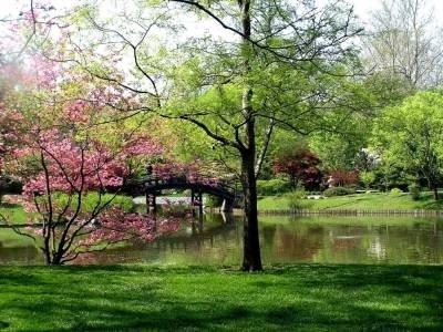 Прикрепленное изображение: и весна застрелила в висок.jpg