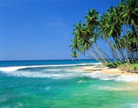 Прикрепленное изображение: shrilan12.jpg
