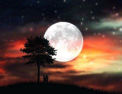 Прикрепленное изображение: начало ночи.jpg