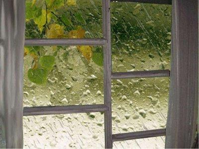 Прикрепленное изображение: дождь.jpg