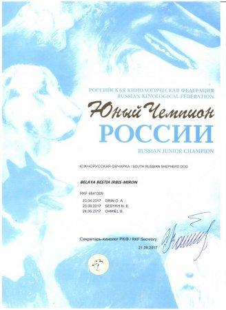 Прикрепленное изображение: диплом ЮЧР.jpg