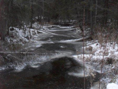 Прикрепленное изображение: бобровый ручей.jpg