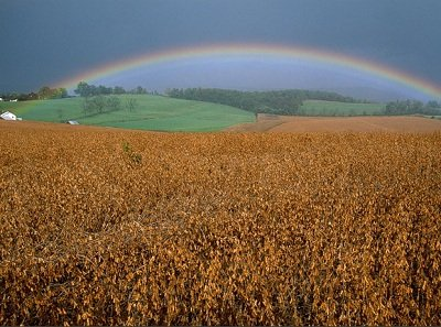 Прикрепленное изображение: дождливый день.jpg